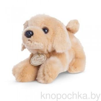 Мягкая игрушка Aurora Собачка Лабрадор, 20 см