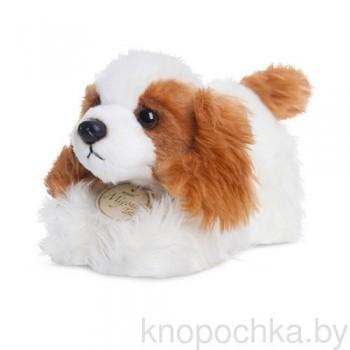 Мягкая игрушка Aurora Собачка Кинг-чарльз-спаниель, 20 см